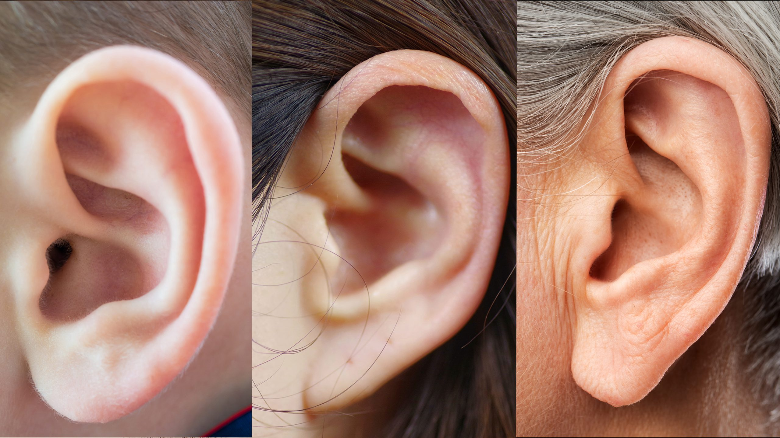 Close ups of three ears: a baby, a teen, a senior